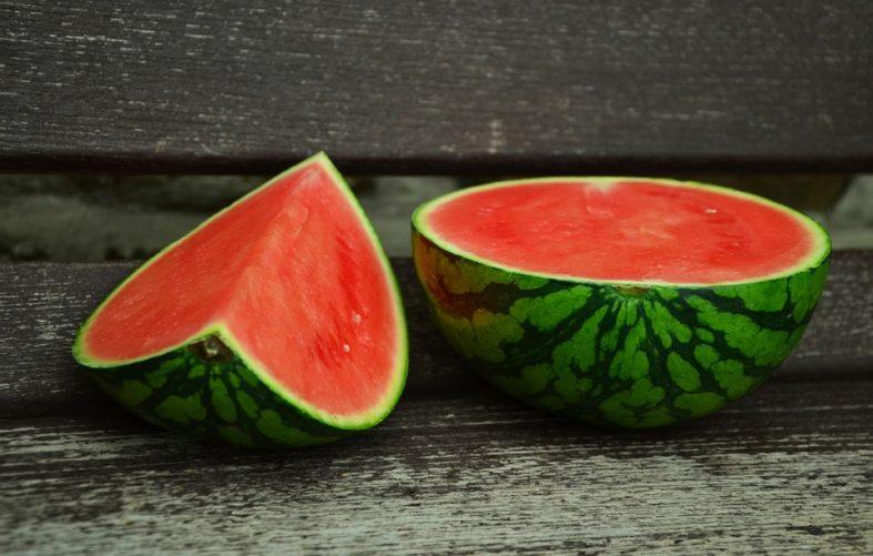 melonen hochbeet